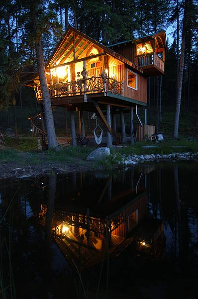 Outa-The -Woods Tree House